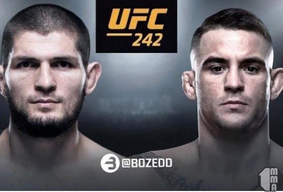 Афиша UFC 242